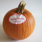Homemade Pumpkin Puree: Thanksgiving Update