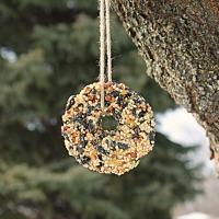 How to make your own homemade birdseed ornaments