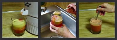 juicer collage 4