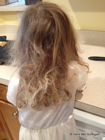 Guest Post  Homemade Leave-in Hair Conditioner and Detangler - The ... 22c69f1200d9