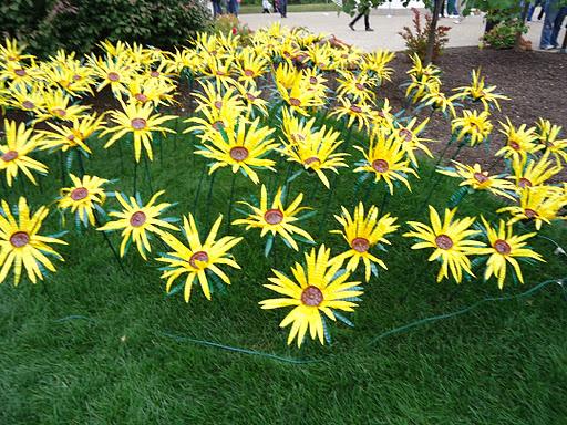 artprize field of sunflowers