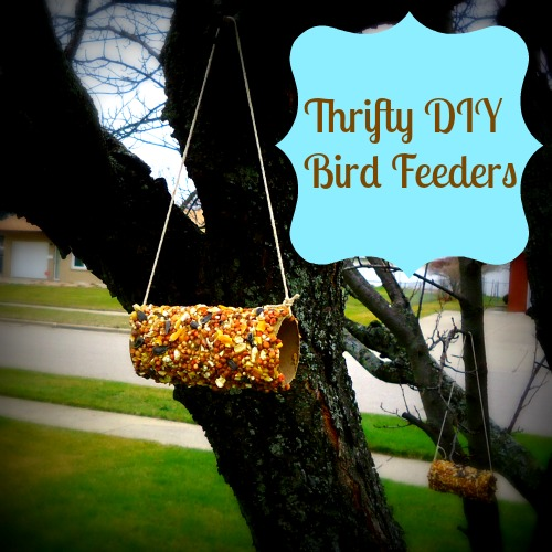 DIY Bird Feeder in Tree