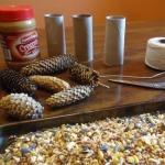Pine Cones and Toilet Paper Tubes = DIY Bird Feeders