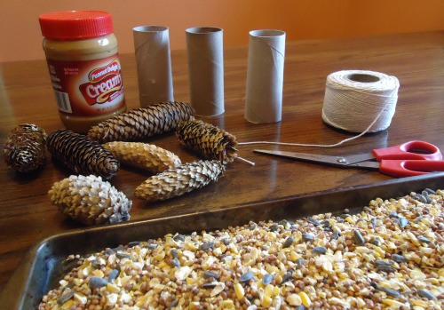 pine cones and toilet paper tubes diy bird feeders the