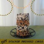 DIY Birdseed Cakes
