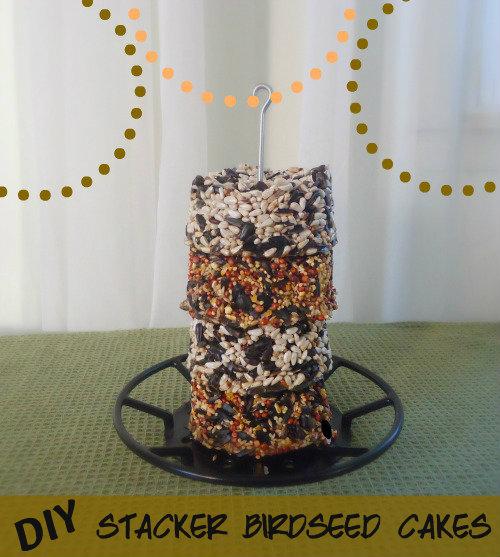 homemade birdseed cakes