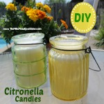 citronella candle 150