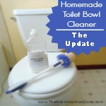 Homemade Toilet Bowl Cleaner:  The Update