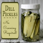 Make Your Own Dill Pickles