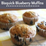 Bisquick Blueberry Muffin Recipe