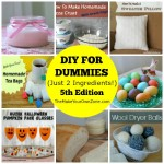 DIY For Dummies (Just 2 Ingredients!) – 5th Edition
