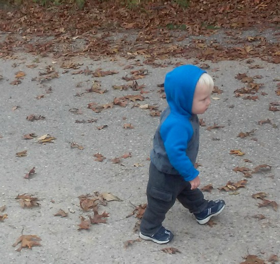 walking Oct 2015-2