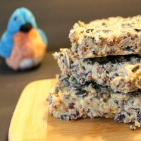 Make your own birdseed cakes with this simple recipe