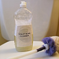 make your own toilet bowl cleaner