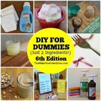 DIY For Dummies (Just 2 Ingredients!) – 6th Edition