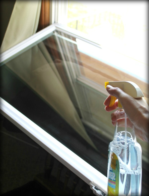My unexpected DIY window cleaner - it worked great!