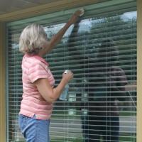 My Unexpected DIY Window Cleaner