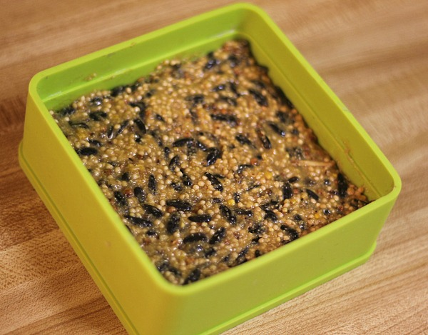 How to make homemade birdseed cakes using the You Do It Suet mold