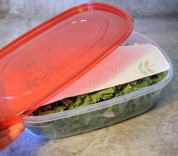 how to keep shredded lettuce fresh