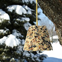 Make your own birdseed bells