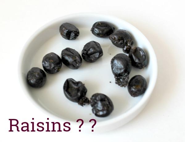 Trying to make homemade raisins