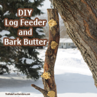 DIY Log Feeder for birds hanging on a tree